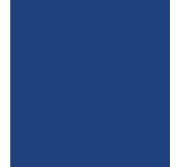 indian-e-visa